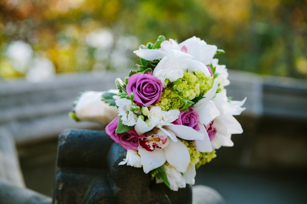 centralpark_ladiespavilion_wedding_EJ-127