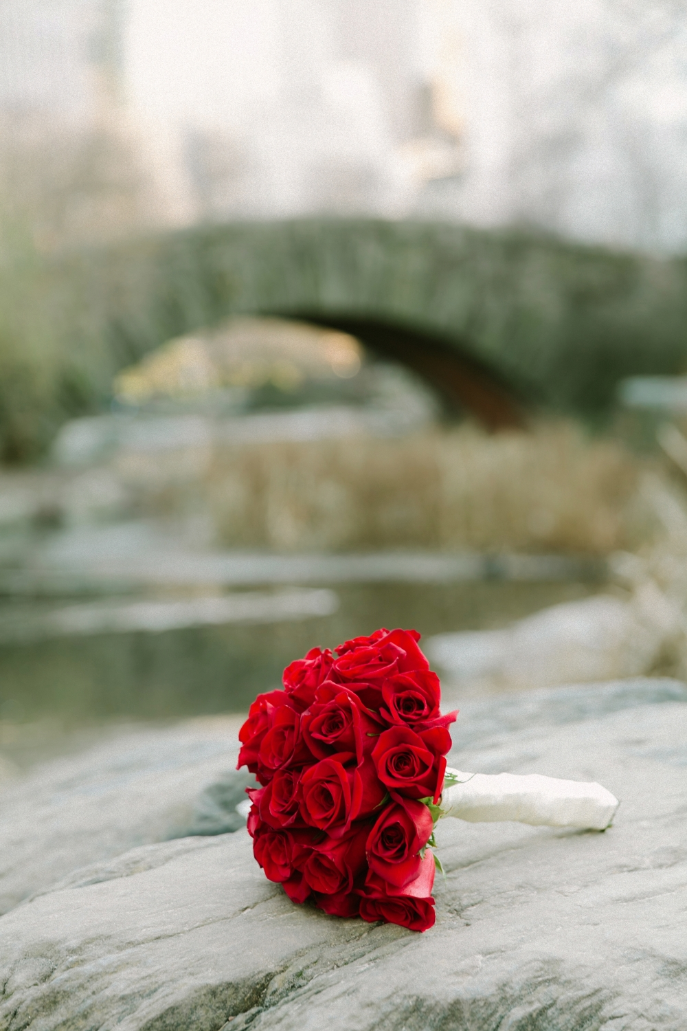 gapstow_bridge_elopement_RJ-90
